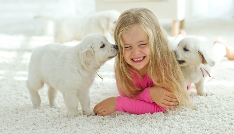 Carpet Girl with Puppies