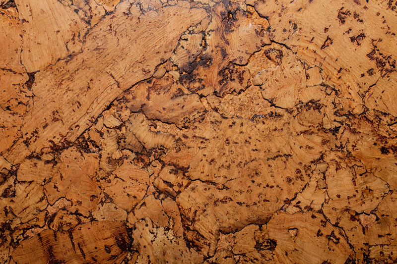Cork Flooring Sample